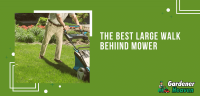 The Best Large Walk Behind Mower | Top 5 Reviews & Detailed Buying Guide