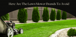 Understand Lawn Mower Brands To Avoid Before You Regret | Pick From Best Brands In 2021