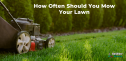 Here's What No One Tells You About How Often Should You Mow Your Lawn in 2021