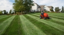 How To Cut Tall Grass with a Riding Mower | Practical 8 Steps Guide